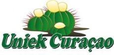 Stichting Uniek Curacao